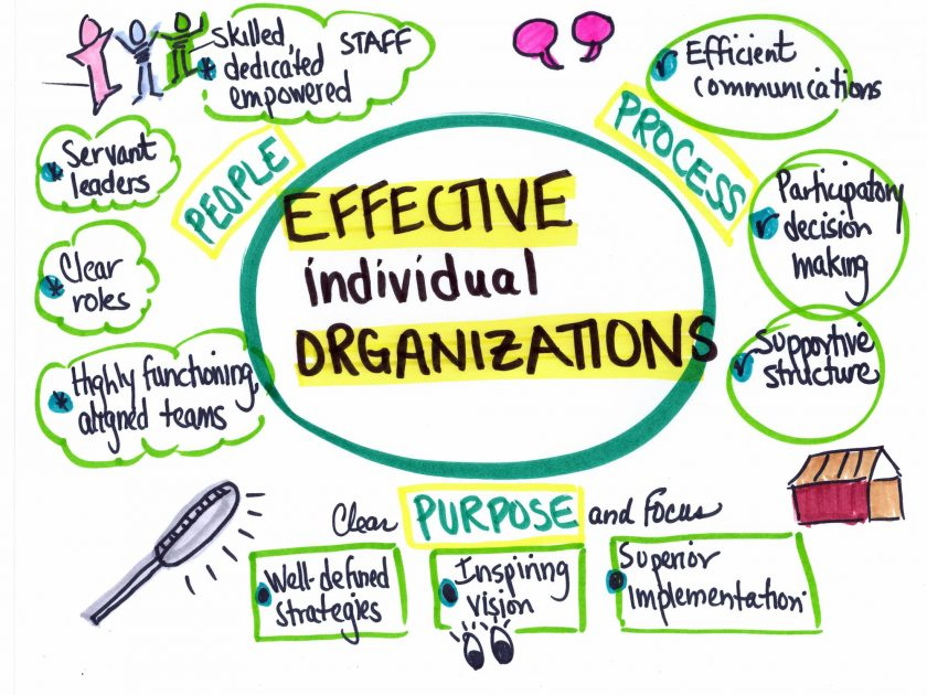 effectiveorganizations